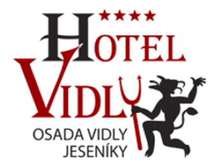 Logo Vidly